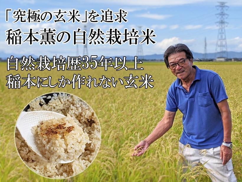 稲本自然栽培米トップ画像