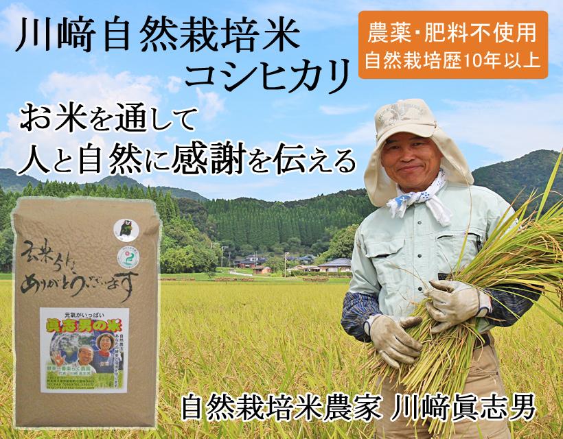 川﨑自然栽培米トップ画像