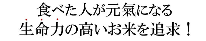川﨑自然栽培米テキスト