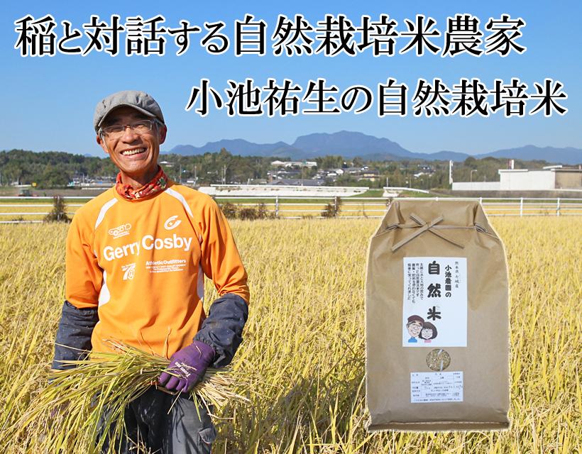 小池自然栽培米トップ画像