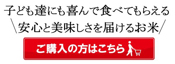 平田自然栽培米テキスト
