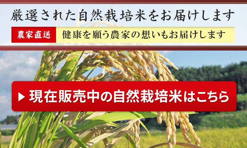 販売中の自然栽培米はこちら