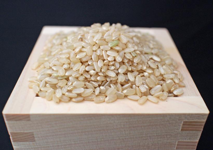 山野自然栽培米玄米