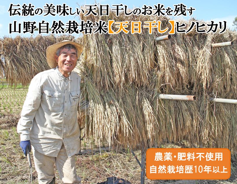 山野自然栽培米トップ画像