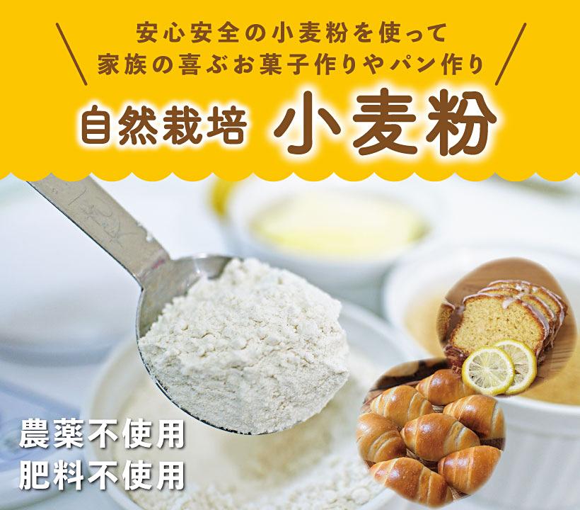 自然栽培小麦粉