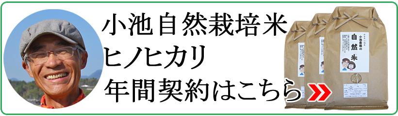 小池自然栽培米ヒノヒカリ年間契約