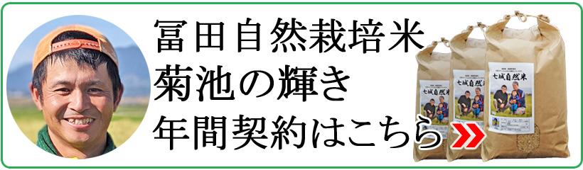 冨田自然栽培米菊池の輝き年間契約