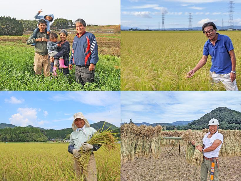 自然栽培米農家