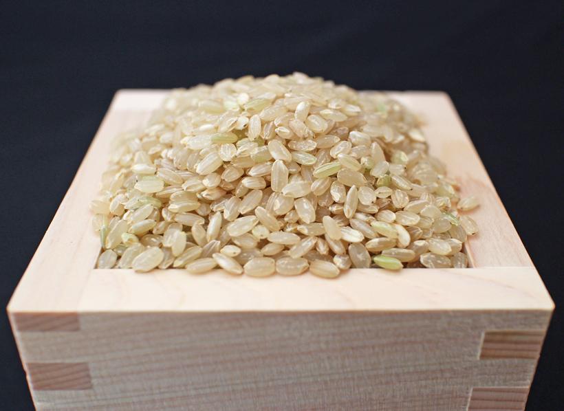 旭亀の尾玄米