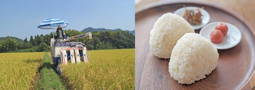 令和3年川﨑さんの自然栽培米作りがスタート|3月にはプール育苗,4月には田植え