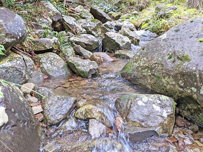 水からの教え【水六訓】|自然からの教え