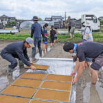 無農薬の自然栽培米の苗床作業|熊本県菊池市七城町の冨田米