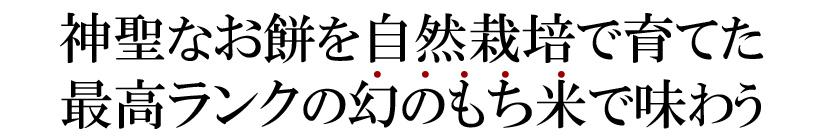 滋賀羽二重糯テキスト