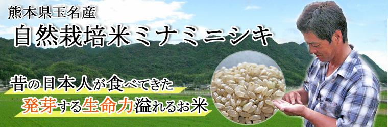 自然栽培米ミナミニシキのサイト