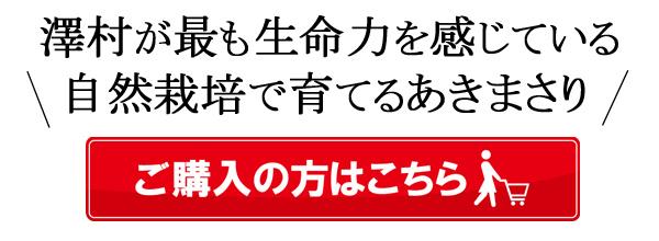 澤村自然栽培米あきまさりご購入はこちら