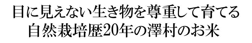 澤村自然栽培米あきまさり説明
